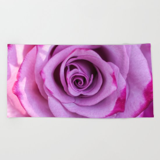 Heart of a rose I - Pink and purple Roses flowers Beach Towel