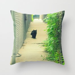 Black Cat With Gangway Ivy  Throw Pillow