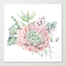 Pink Succulents by Nature Magick Canvas Print