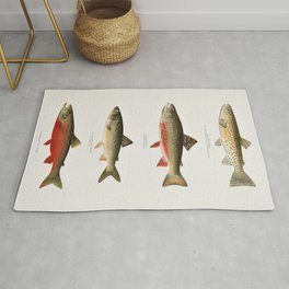 Illustrated North American Freshwater Trout Game Fish Identification Chart Rug