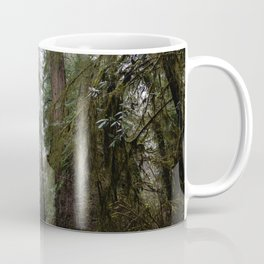 Redwood Forest Adventure III - Nature Photography Coffee Mug