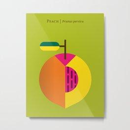 Fruit: Peach Metal Print