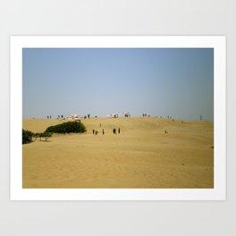 Gliding the Dunes Art Print