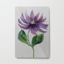 Violet Clematis Metal Print