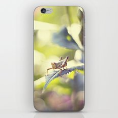 always let your conscience be your guide iPhone & iPod Skin