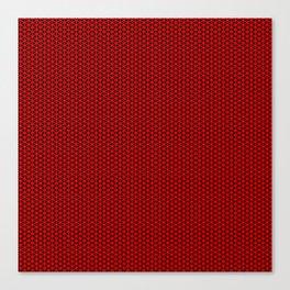 Red Mesh Canvas Print