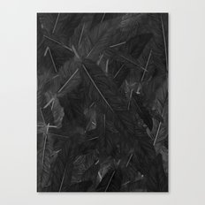 Feathered (Black). Canvas Print
