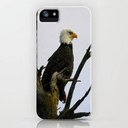 eagle striking a pose (square) iPhone Case