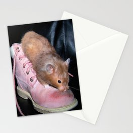 The Old Hamster in the Shoe Stationery Cards