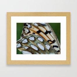 Fritillary Wings Framed Art Print