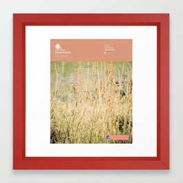 The Visual Mixtape 2010 | Fleet Foxes | 05 / 25 Framed Art Print
