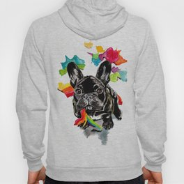 When a dog catches a rainbow Hoody