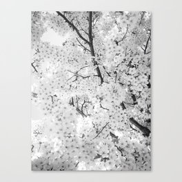 Spring is here to stay Canvas Print