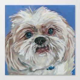 Ruby the Shih Tzu Dog Portrait Canvas Print