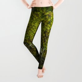 Part of the green path Leggings