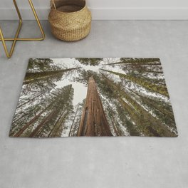 Sequoia Stretch - Nature Photography Rug