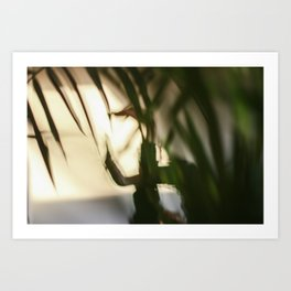 Dancing people, dance, shadows, hands and plants, blurred photography, dancer, forest, yoga Art Print