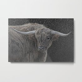 Highland cow in the snow Metal Print