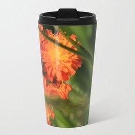 Orange Hawkweed Wildflowers Travel Mug