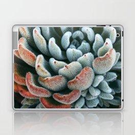 Autumn Succulent #1 Laptop & iPad Skin