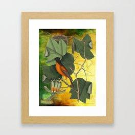 Baltimore Oriole on Tulip Tree, Vintage Natural History and Botanical Framed Art Print