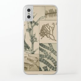Patterns In Nature Clear iPhone Case
