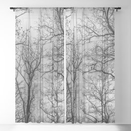 Flying tree branches, black and white Sheer Curtain