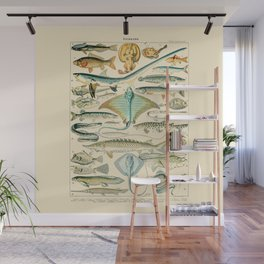 Vintage Fishing Diagram // Poissons II by Adolphe Millot 19th Century Science Textbook Artwork Wall Mural