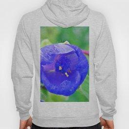 Inside the Blue Flower Hoody