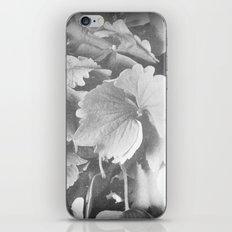 hydrangea iPhone & iPod Skin