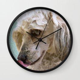 Sweet Old Dog Wall Clock
