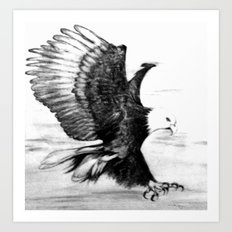 Soaring Eagle Art Print
