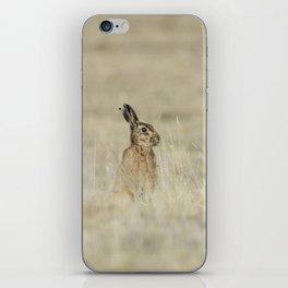 Brown hare iPhone Skin
