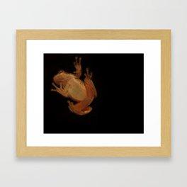 Window Frog Framed Art Print