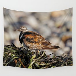 Ruddy Turnstone on Seaweed Mountain at the Beach Wall Tapestry