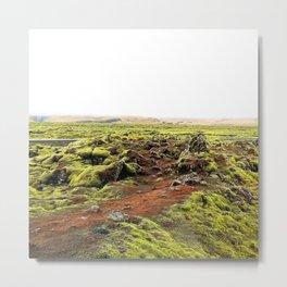 Lava Moss Metal Print