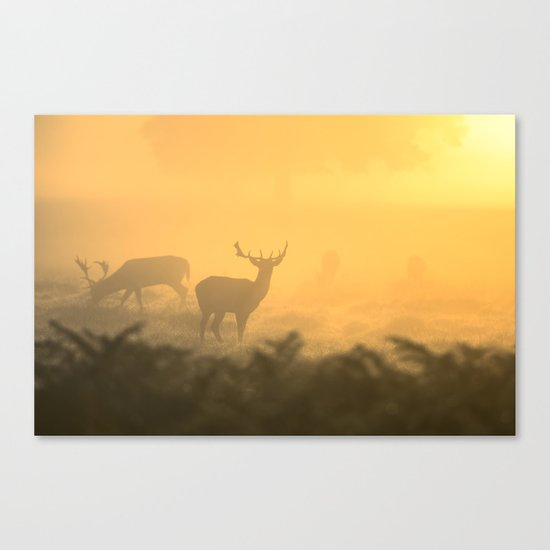 In the Clear Canvas Print