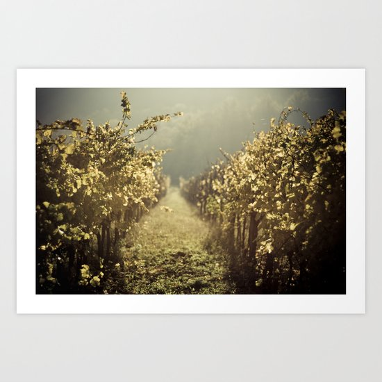 Autumn grapes vine Art Print