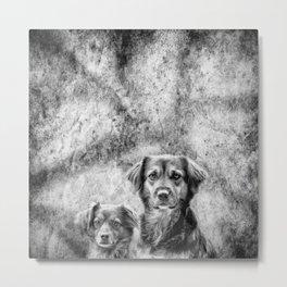 Couple of Dogs Metal Print
