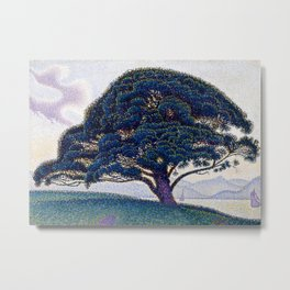 The Bonaventure Pine Metal Print