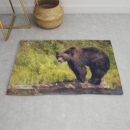 Alaskan Brown Bear Rug