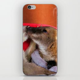 First Love  - Wallaby Babies iPhone Skin