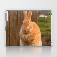 Country Bunny Laptop & iPad Skin