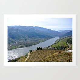 Portuguese Wine Country Art Print