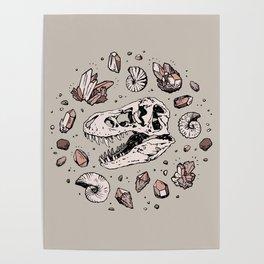 Geo-rex Vortex | Rose Quartz Poster