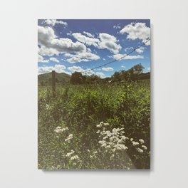 Farm • Appalachian Trail Metal Print