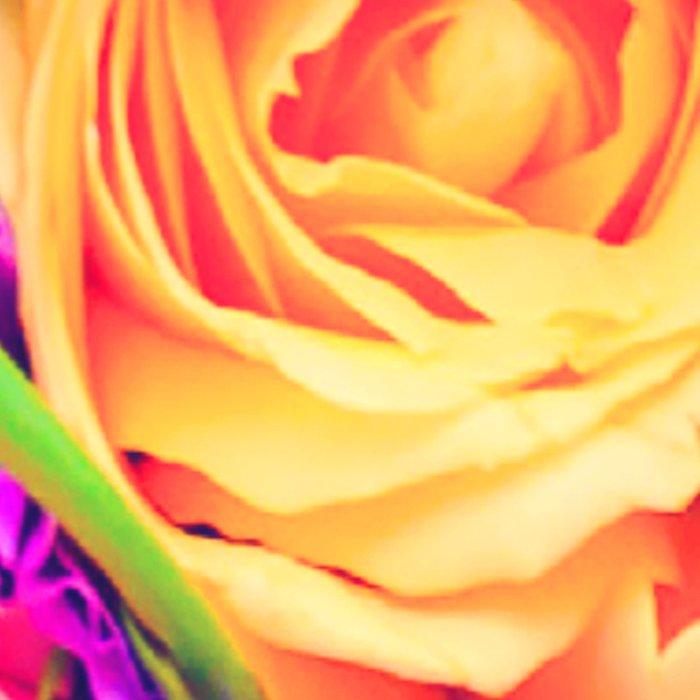 Roses 1 Leggings