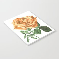 For ever beautiful Notebook