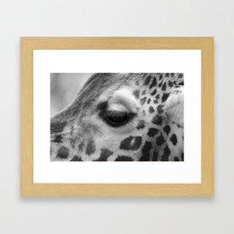 Eye of giraffe - mono Framed Art Print