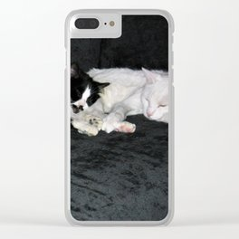 3 cats lounging Clear iPhone Case